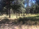 54645 Gray Squirrel Drive - Photo 3