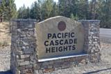 20005 Pacific Heights Road - Photo 12