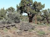 10427 Oak - Photo 9