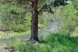 1111 Timber Pine Drive - Photo 3
