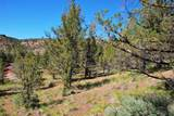 0 Sw Sundown Canyon Road - Photo 13