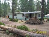 51849 Pine Loop Drive - Photo 1