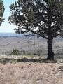 17678 Wilderness Road - Photo 2