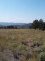 17678 Wilderness Road - Photo 9