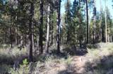 900 Forest Service Road - Photo 1