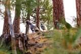 69836 Camp Polk Road - Photo 25