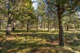 17681 Plover - Photo 8