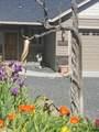 14129 Chinook Drive - Photo 60