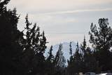 6950 Northwest Way - Photo 5