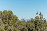 17162 Mt Mckinley Way - Photo 9
