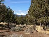 1820 Wild Rye Circle - Photo 2