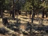 1820 Wild Rye Circle - Photo 5