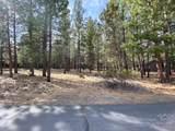 60030 River Bluff Trail - Photo 2