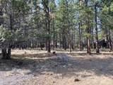 60030 River Bluff Trail - Photo 5
