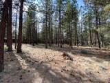 60030 River Bluff Trail - Photo 7