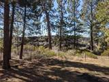 60025 Crater Road - Photo 15