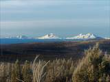 13030 Grizzly Mountain Road - Photo 5