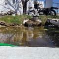 1451 Teal Loop - Photo 7