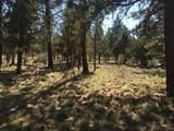 1617 Wild Rye Circle - Photo 10