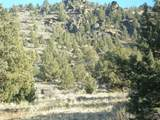 16624 Antelope Creek - Photo 2