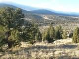 16624 Antelope Creek - Photo 3