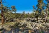 1685 Wild Rye Circle - Photo 6