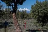 1201 Trail Creek Drive - Photo 29