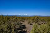 1201 Trail Creek Drive - Photo 30
