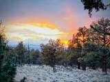 1201 Trail Creek Drive - Photo 31