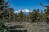 1201 Trail Creek Drive - Photo 4