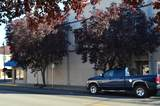 635 Main Street - Photo 5