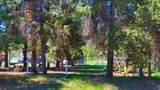 52285 Dorrance Meadow Road - Photo 20