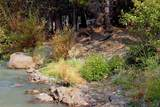380 Timber Creek Drive - Photo 4