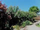 10 Meadowfield Circle - Photo 30