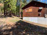 31265 Meadow Lark Drive - Photo 12