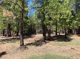 31265 Meadow Lark Drive - Photo 18
