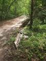 Jump Off Joe Creek Road - Photo 6