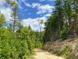 0 Forest Creek Tl11000a Road - Photo 2