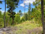 0 Forest Creek Tl11000a Road - Photo 4