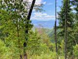 0 Forest Creek Tl11000a Road - Photo 7