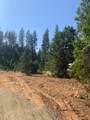 NS Limpy Creek Road - Photo 13