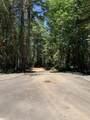 NS Limpy Creek Road - Photo 2