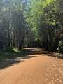 NS Limpy Creek Road - Photo 7