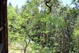 5601 Sardine Creek L Fork Road - Photo 11