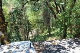 5601 Sardine Creek L Fork Road - Photo 12