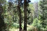 5601 Sardine Creek L Fork Road - Photo 16