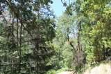 5601 Sardine Creek L Fork Road - Photo 17