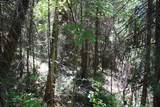 5601 Sardine Creek L Fork Road - Photo 18