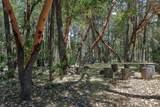6576 Whispering Pines Lane - Photo 37