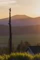 943 Beattys Butte Drive - Photo 1